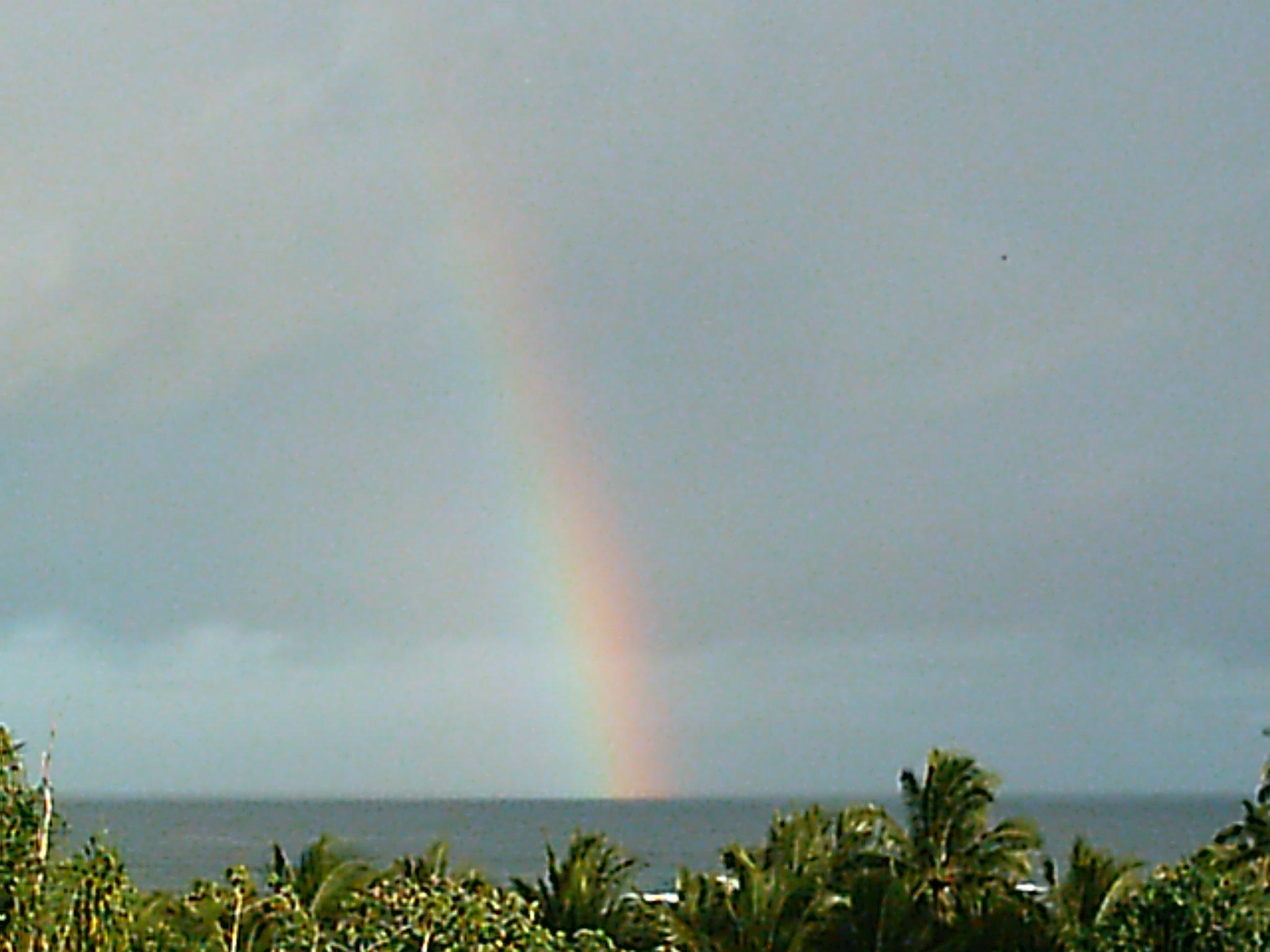 Real Hawaii Vacation Rental Eco Agricultural Pele Lani